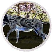 Blue Zebra Round Beach Towel
