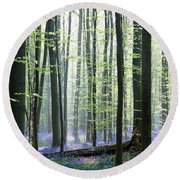 Bluebell Forrest 1 Round Beach Towel