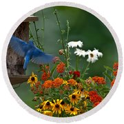 Bluebird And Colorful Flowers Round Beach Towel
