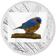 Bluebird In Prairie Frame Round Beach Towel