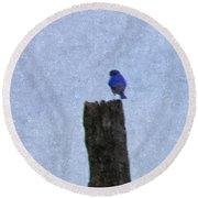 Bluebird On A Fencepost Round Beach Towel