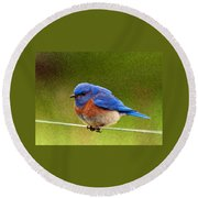 Bluebird  Painting Round Beach Towel