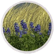 Bluebonnets With Ladybug Round Beach Towel