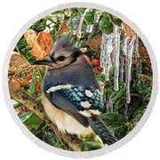 Bluejay And Ice Round Beach Towel