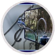 Bluejay Oob - Featured In 'out Of Frame' And Comfortable Art Groups Round Beach Towel