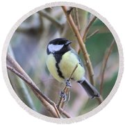 Bluetit Round Beach Towel