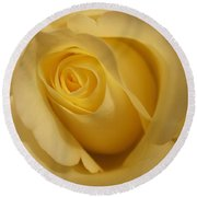 Blushing Cream Rose 3 Round Beach Towel