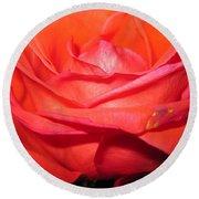 Blushing Orange Rose 7 Round Beach Towel
