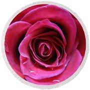 Blushing Pink Rose 3 Round Beach Towel