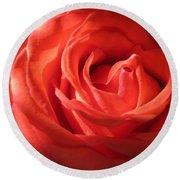 Blushing Orange Rose 1 Round Beach Towel