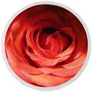 Blushing Orange Rose 3 Round Beach Towel