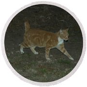Bob-tail Cat Round Beach Towel