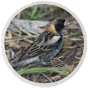 Bobolink Feeding Round Beach Towel