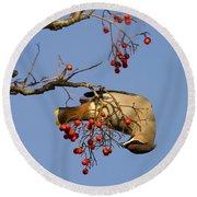 Bohemian Waxwing Eating Rowan Berries Round Beach Towel