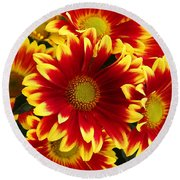 Bold Round Beach Towel