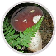 Bolete Mushroom And Fern Round Beach Towel