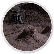 Bones At Mud Pot Area I I Round Beach Towel