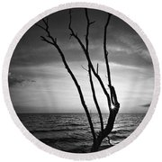 Bonita Beach Tree Black And White Round Beach Towel