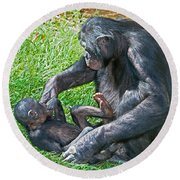 Bonobo Adult Playing With Baby Round Beach Towel