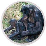 Bonobo Adult Tickeling Juvenile Round Beach Towel