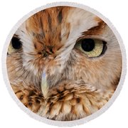 Boreal Owl Eyes  Round Beach Towel