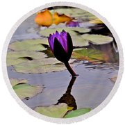 Botanical Garden Lotus Flowers Round Beach Towel