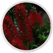 Bottle Brush Round Beach Towel