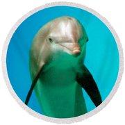 Bottlenose Dolphin Portrait Round Beach Towel