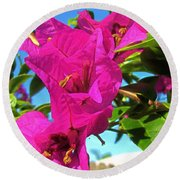 Bougainvillea Beauty Round Beach Towel