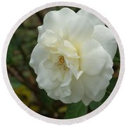 Bountiful White Rose... Round Beach Towel