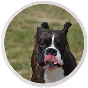 Boxer Licking His Chops Round Beach Towel
