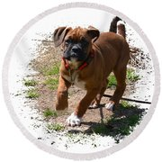 Boxer Puppy 14-1 Round Beach Towel
