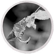Bramble Leaves - Black And White Round Beach Towel
