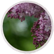 Branch With Spring Lilac Flowers Round Beach Towel
