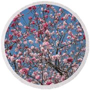 Branches And Blossoms Round Beach Towel