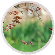 Branches And Leaves Round Beach Towel