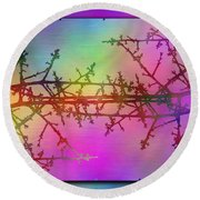 Branches In The Mist 36 Round Beach Towel