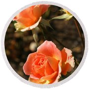 Brass Band Roses In Autumn Round Beach Towel