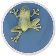 Brass Frog Round Beach Towel