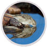 Brewers Sparrow At Waterhole Round Beach Towel
