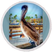 Brief Pelican Encounter  Round Beach Towel