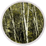 Briers And Brambles Round Beach Towel by Luke Moore