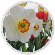 Bright Daffodils Round Beach Towel