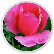 Bright Pink Tulip In Kuekenhof Flower Park-netherlands Round Beach Towel