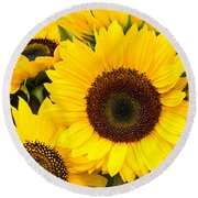 Bright Sunflower Blossoms Round Beach Towel