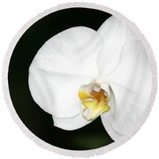 Bright White Orchid Round Beach Towel