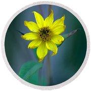 Bright Yellow Wildflower Round Beach Towel