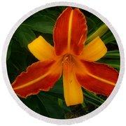 Brilliant Orange Lily Round Beach Towel