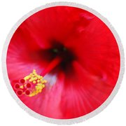 Brilliant Red Hibiscus Round Beach Towel