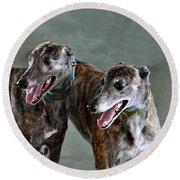 Brindle Greyhound Dogs Usa Round Beach Towel